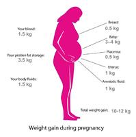 Как не поправится во время второй беременности